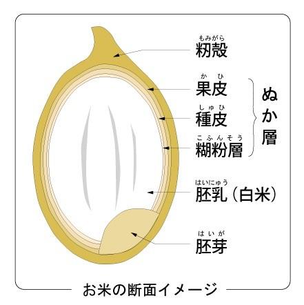 https://prtimes.jp/main/html/rd/p/000000001.000022906.html